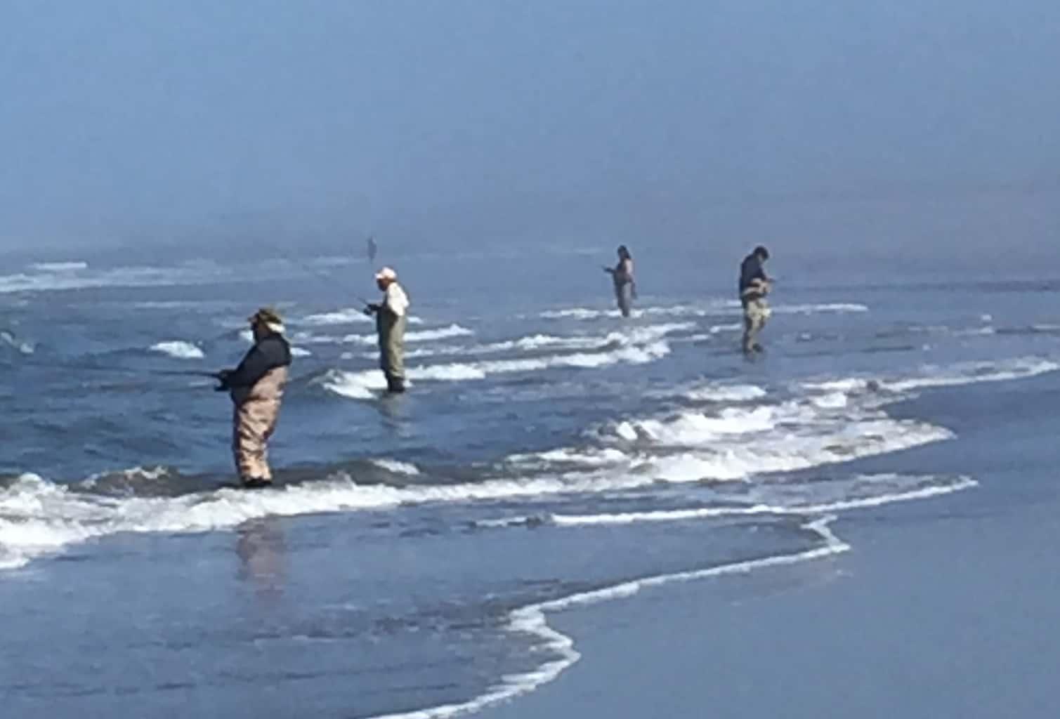oregon coast surfperch fishing