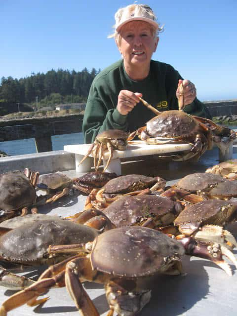 Woman surrounded by Dungeness crabs caught in Oregon.