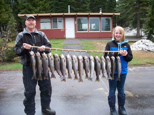 A stringer of diamond lake fish limit.