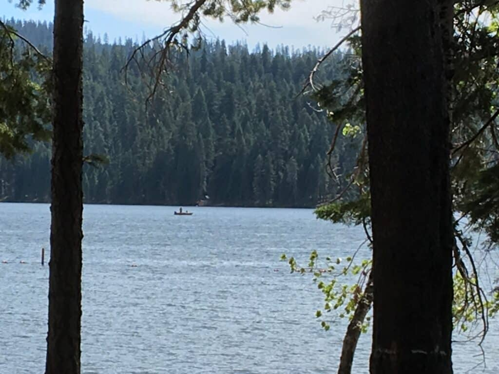 A scenic view of lake of the woods with a fishing boat showing between tree trunks.
