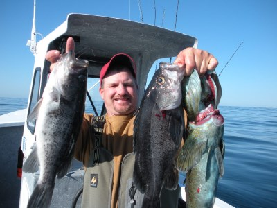 Angler holding a large catch of Pacific bottomfish.
