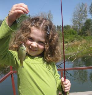 A girl with a small bluegill caught while fishing at St. Louis Ponds.