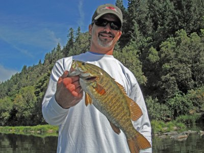 An angler shows a good sized smallmouth bass caught in the umpqua river in oregon.