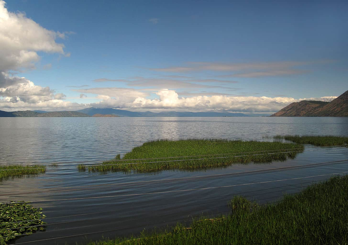 upper klamath lake grows some of the biggest rainbow trout in the united states