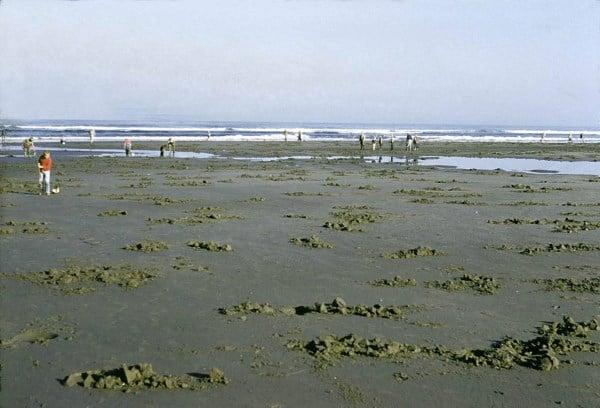 A spot for razor clam digging.