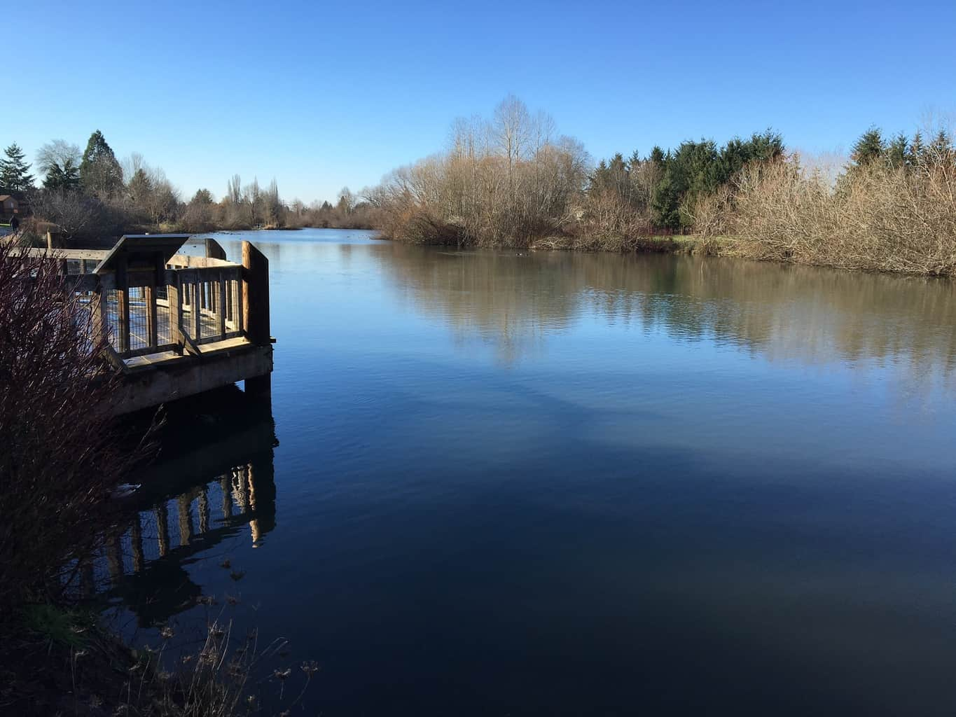 commonwealth lake is a park pond with fishing near beaverton