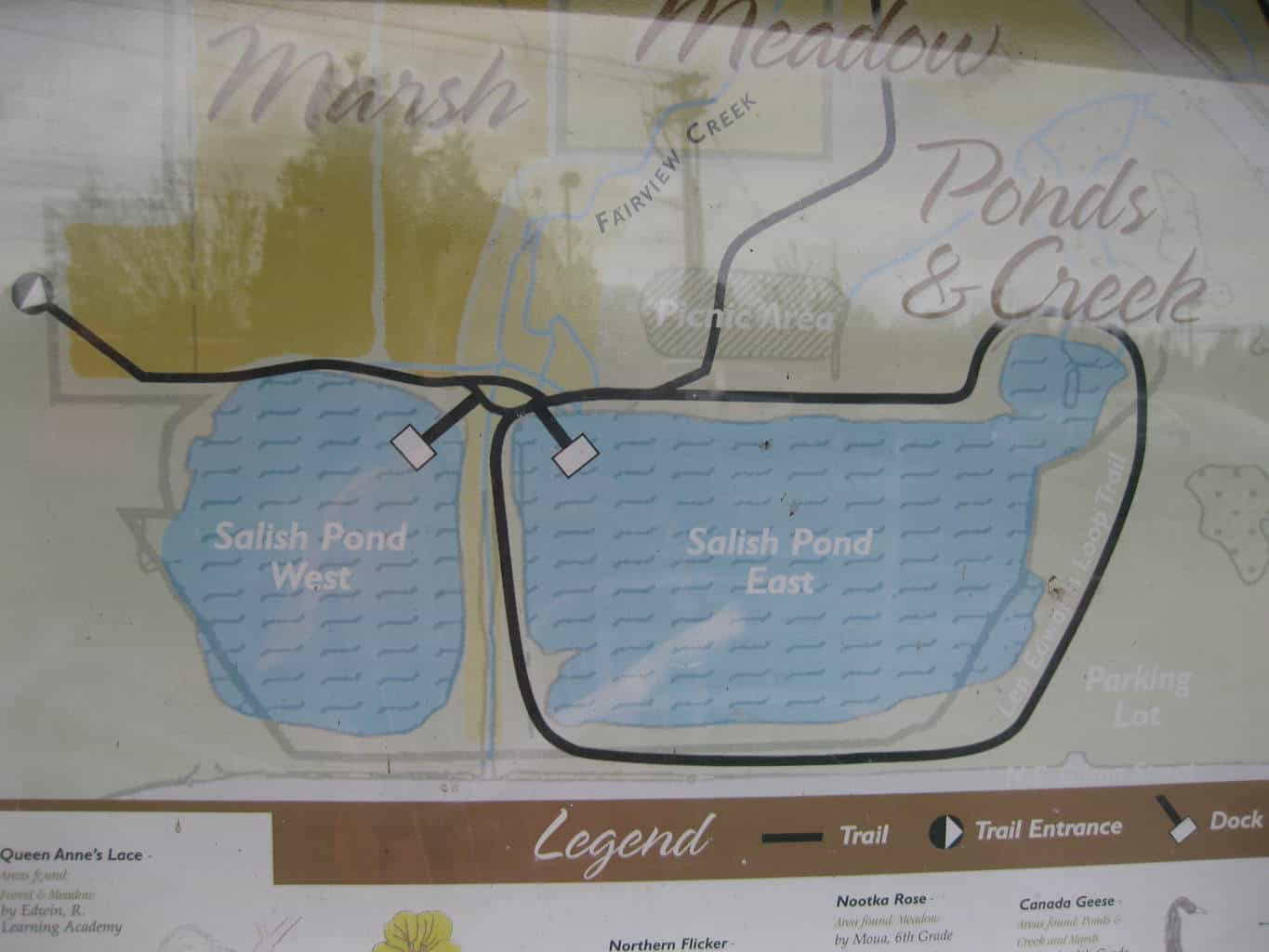 map of salish ponds in fairview oregon