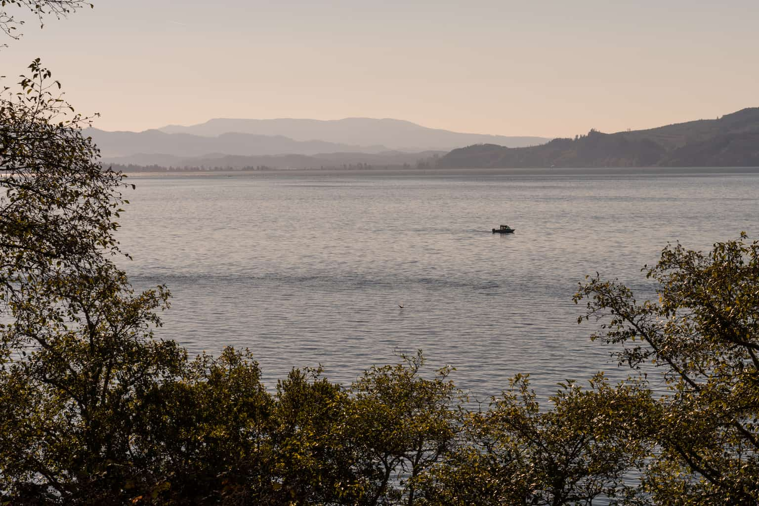 boat motoring on tillamook bay at sunrise