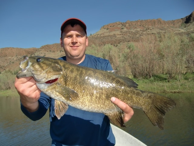 john day river trophy sized smallmouth bass