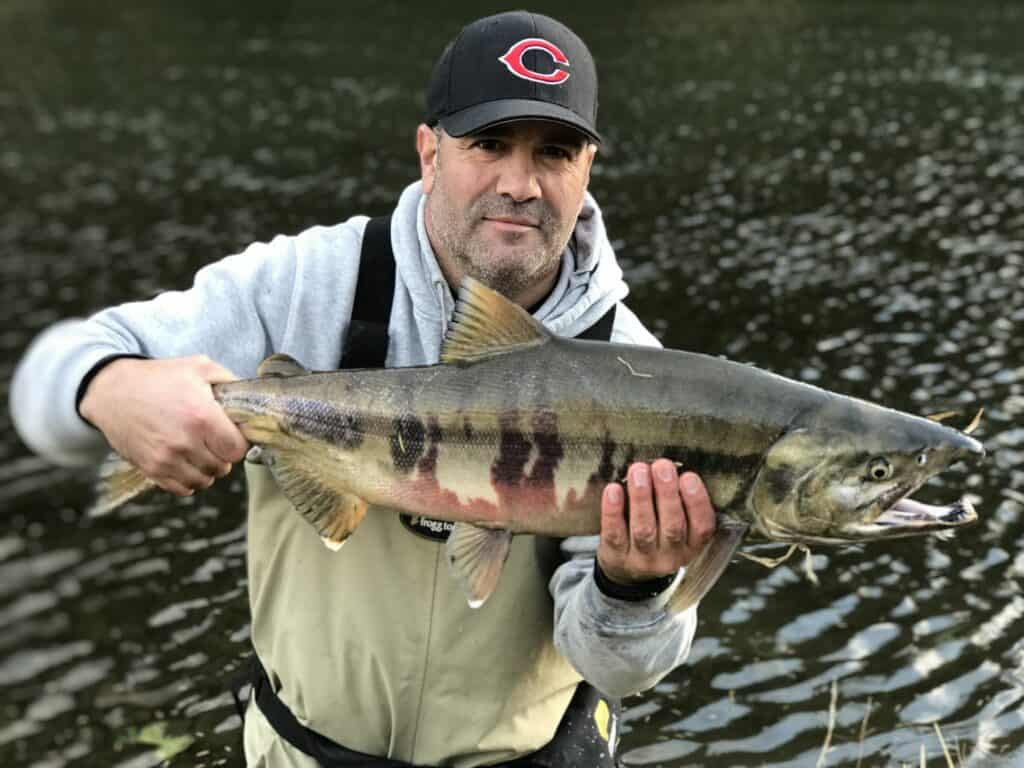 kilchis river chum salmon