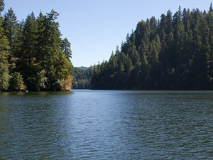 loon lake in southwestern oregon