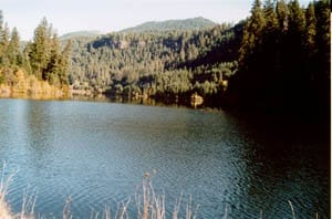 photo of toketee lake