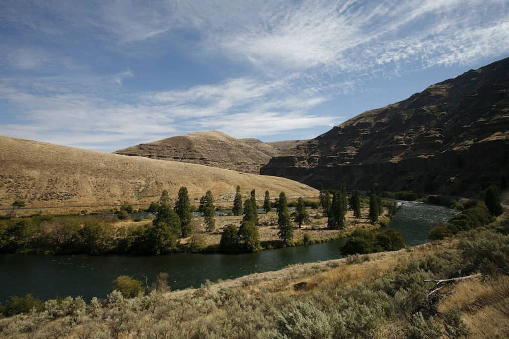 Deschutes River steelhead fly fishing