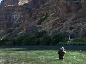 Deschutes River Steelhead scenic, River Run-Chris O'Donnell