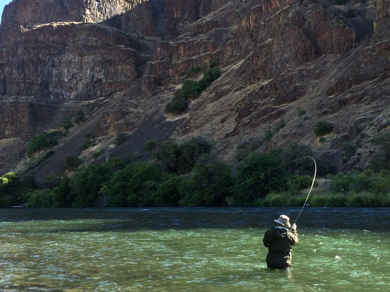 Fly fishing for deschutes river steelhead for Fly fishing for steelhead