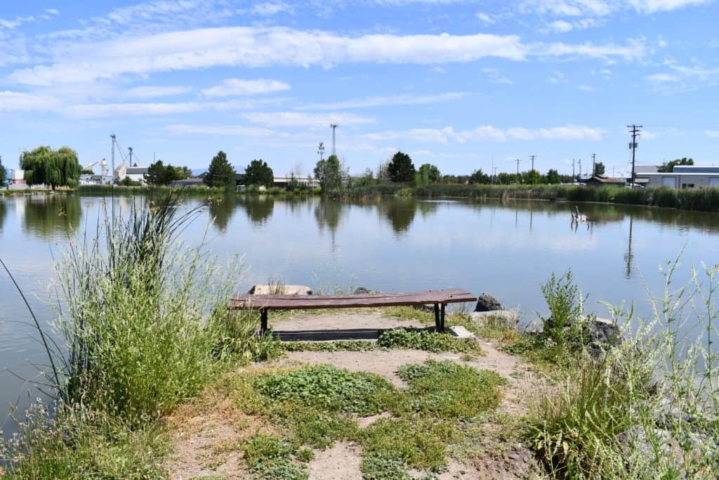 fireman's pond in redmond offers seasonal trout fishing