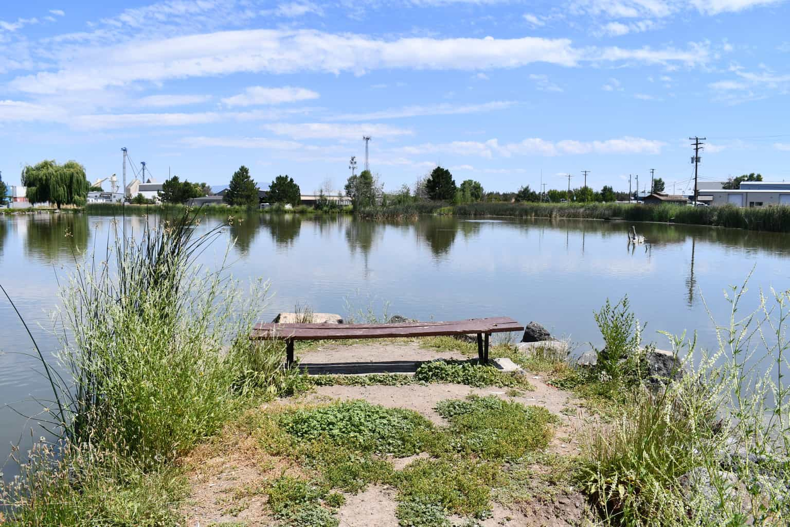 A scenic view of fireman's pond in redmond.