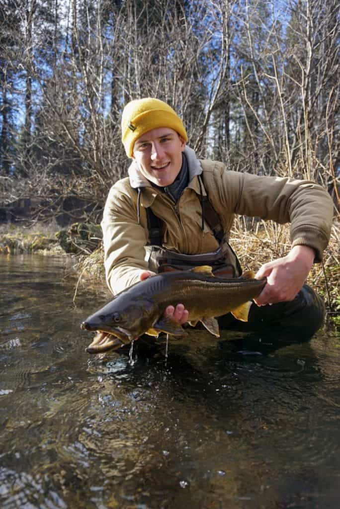 best fly fishing flies for trout and steelhead oregon washington