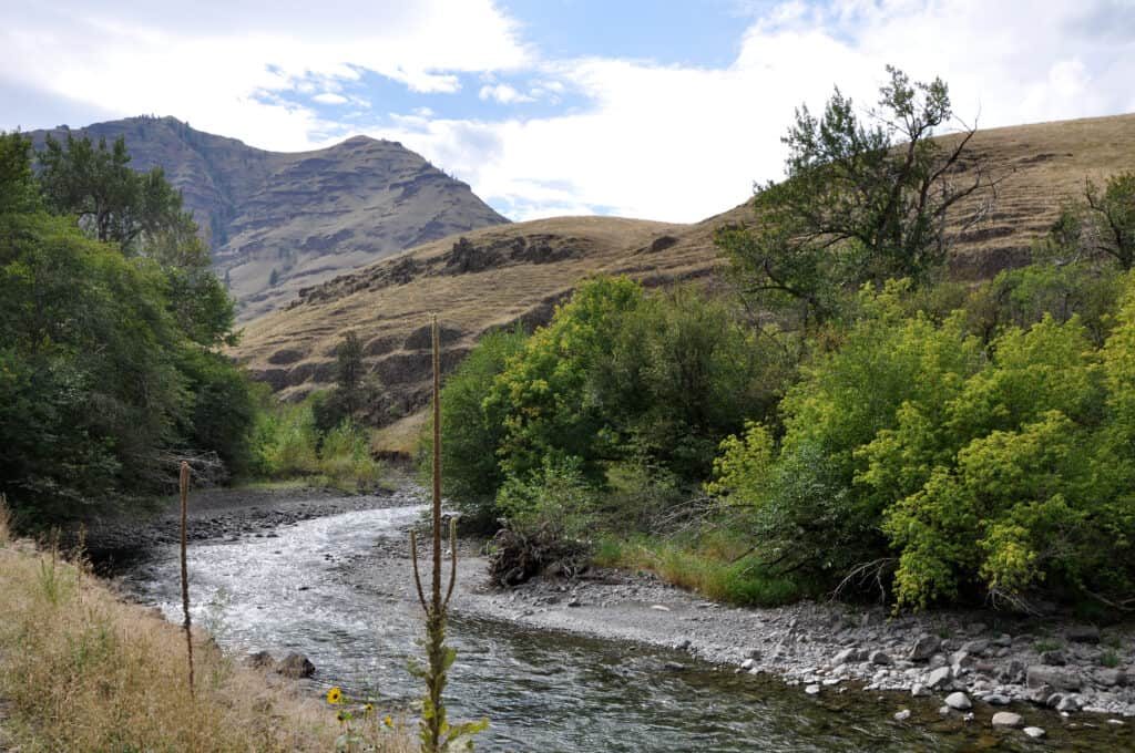 The Imnaha River offers fishing for steelhead, trout and smallmouth bass in a remote landscape in Northeast Oregon.
