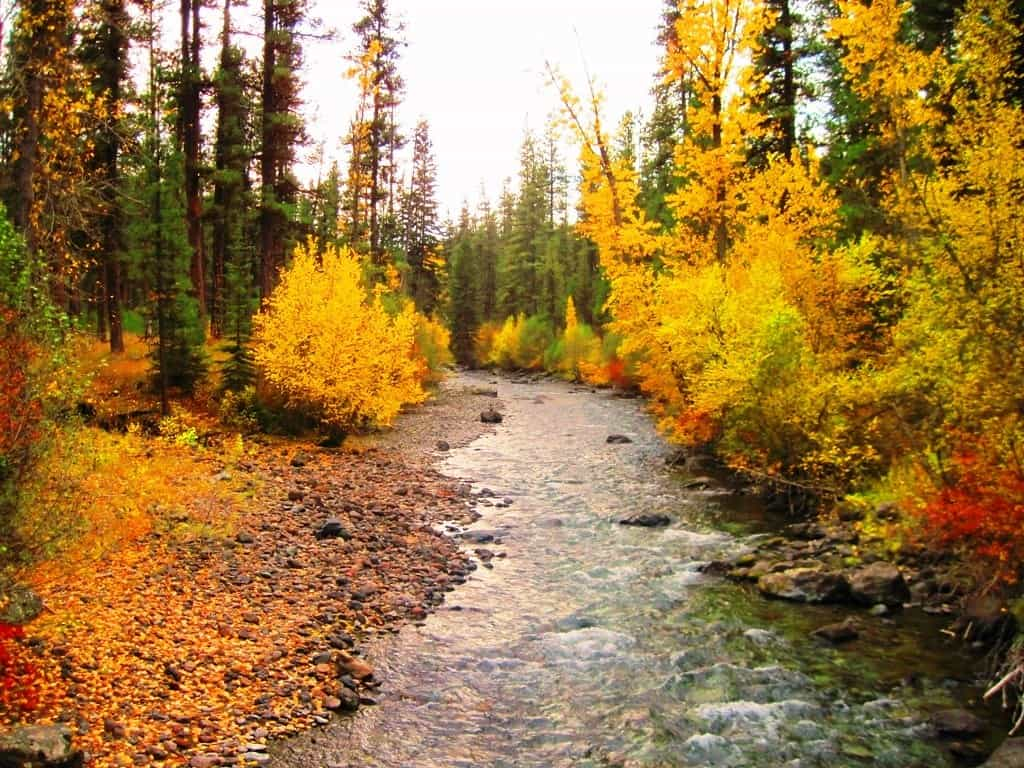 fall fishing imnaha river oregon