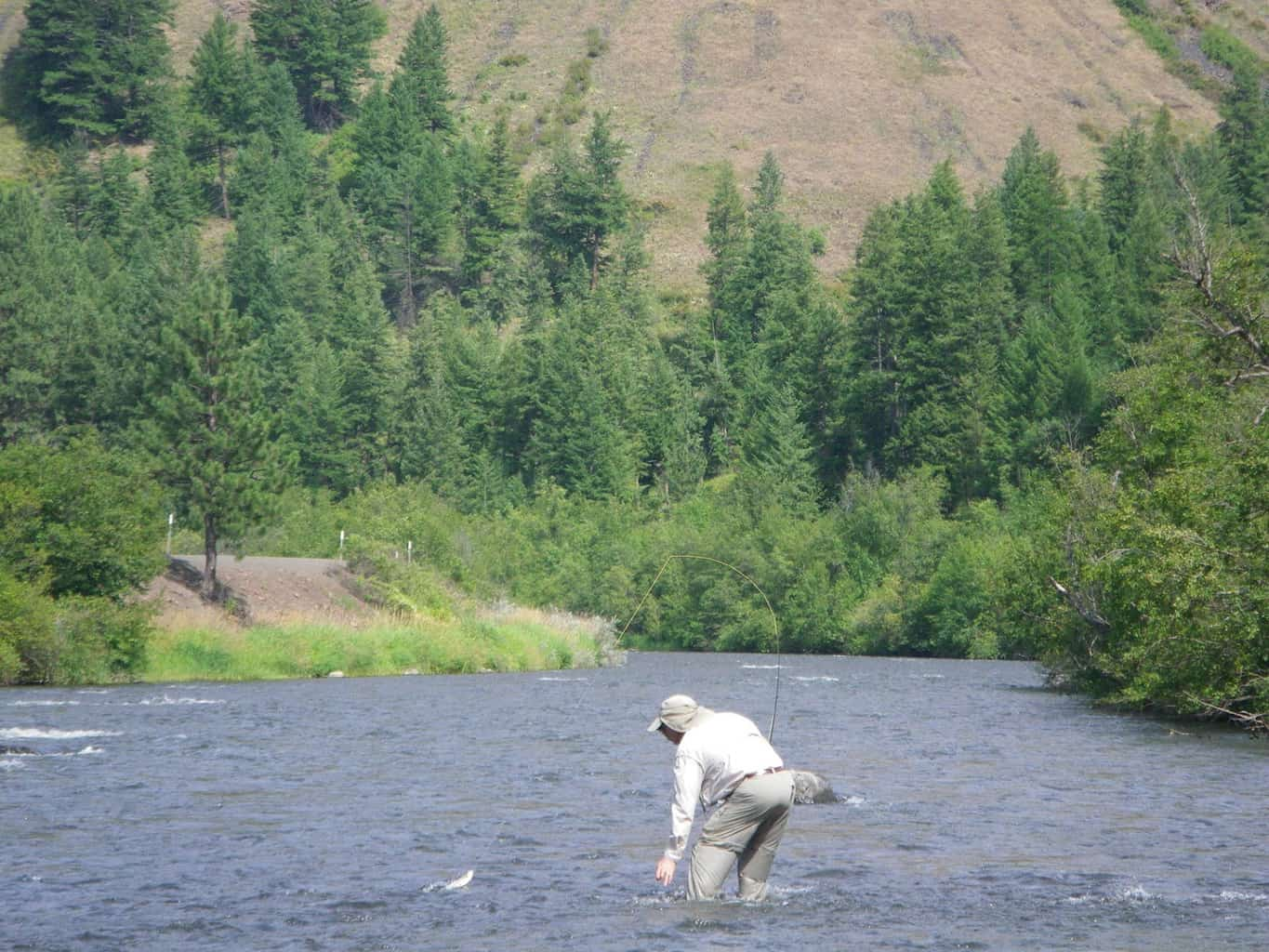 wallowa river fly fishing for trout
