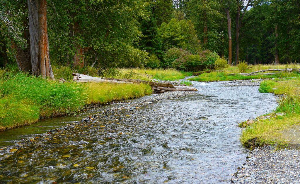 A scenic shot of the small but productive Wallowa River in northeastern Oregon