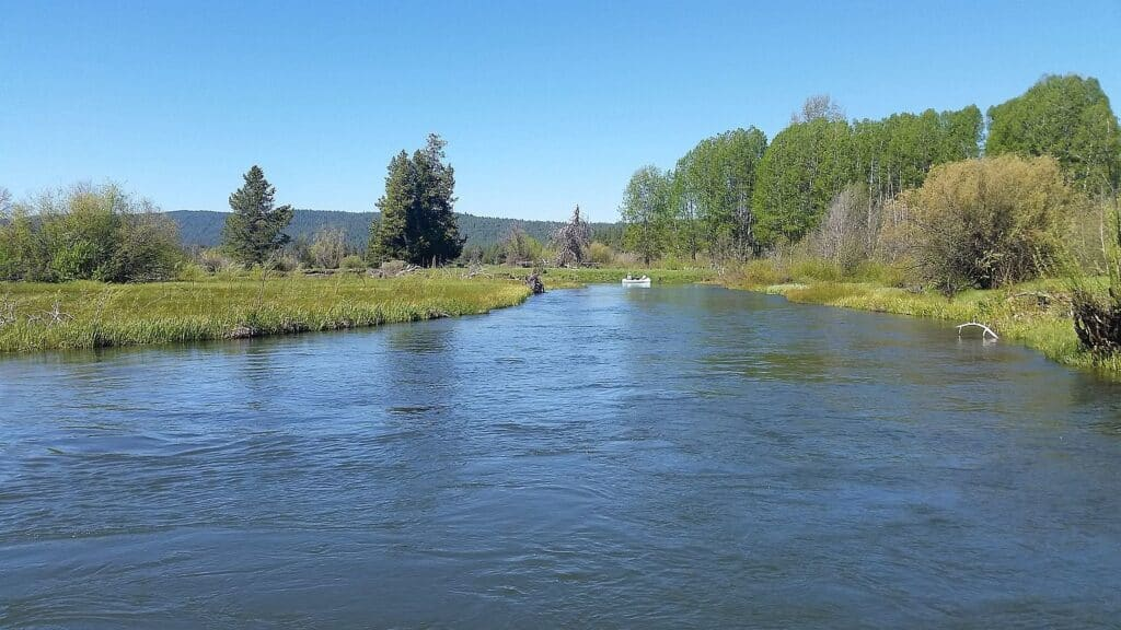 The Wood River in southern Oregon is one of the state's best fly fishing rivers for brown trout.