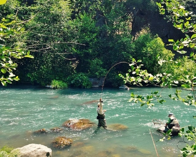Fly fishing on the emerald green mccloud river in california