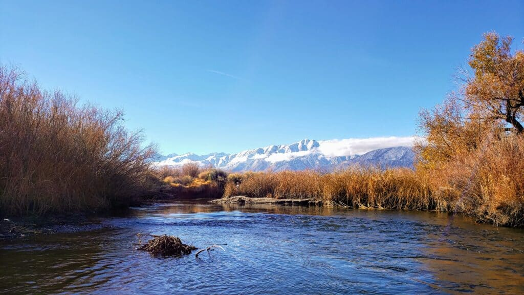The Sierras provide a stunning backdrop for anglers in the Owens River.
