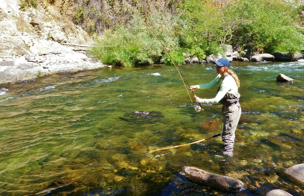Woman fly casting in a narrow section of the Upper Sacramento River