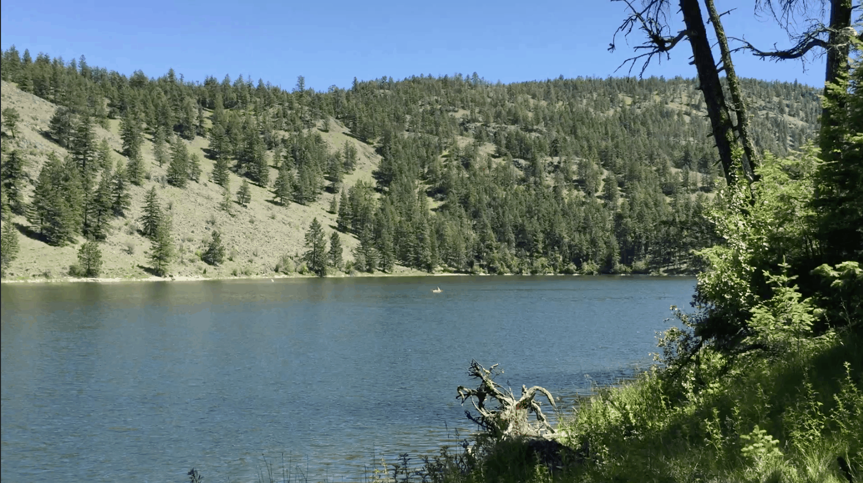 Chopaka Lake in north-central Washington state is a fly angler's paradise
