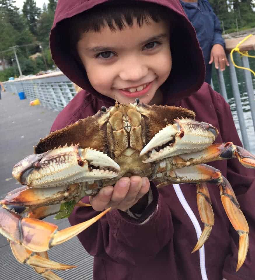 Boy catches a crab from Harper Pier in Kitsap County Washington