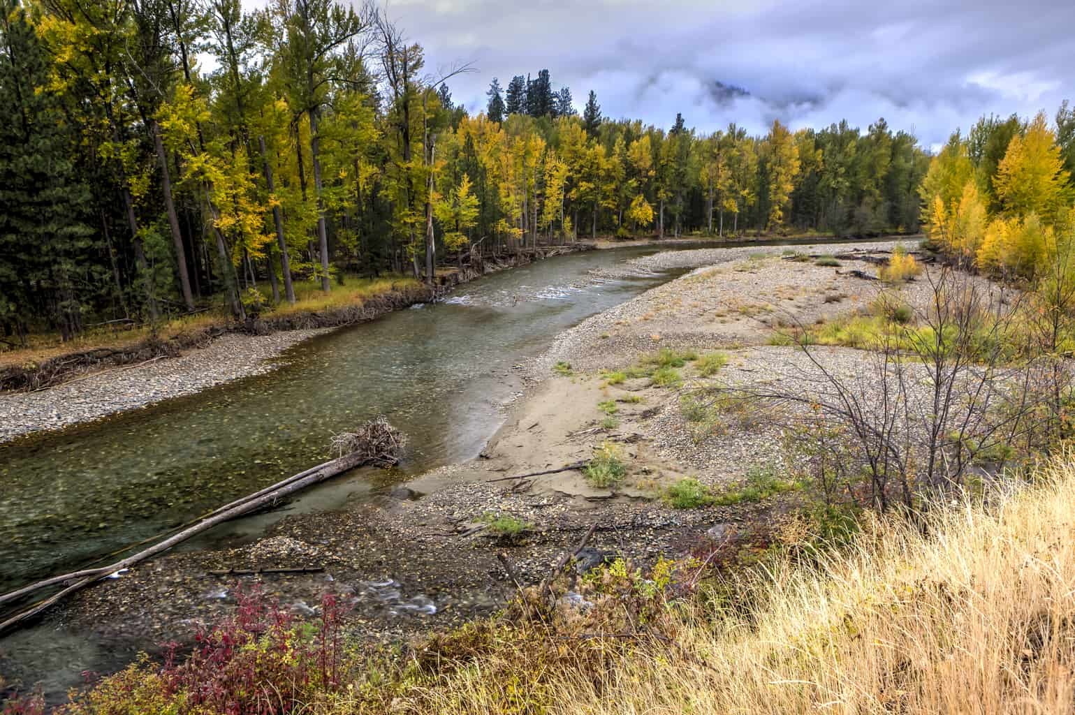 methow river near winthrop during autumn