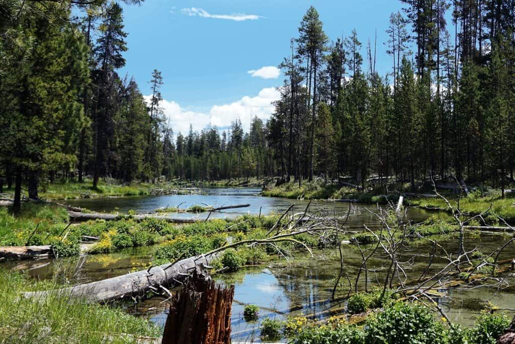 Scenic photo of Fall River, Oregon
