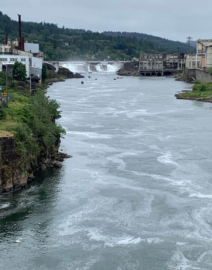 Boats fishing near Willamette Falls in the Willamette River are chasing after the prized spring Chinook salmon that migrate upstream.