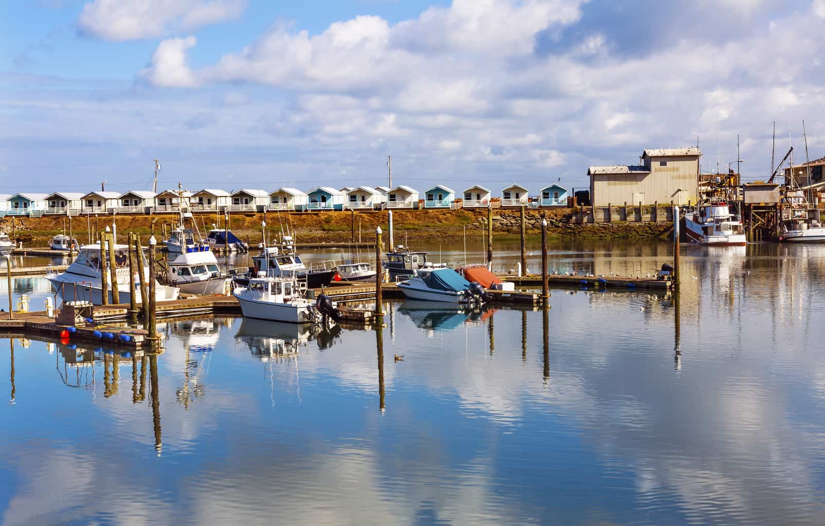 boats in westport harbor in grays harbor county