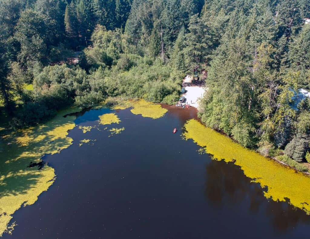 Aerial photo of Bonney Lake