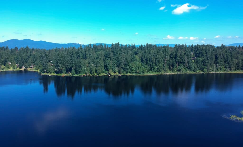 aerial view of spring lake in king county washington