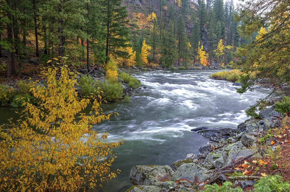 Scenic of Wenatchee River with autumn colors