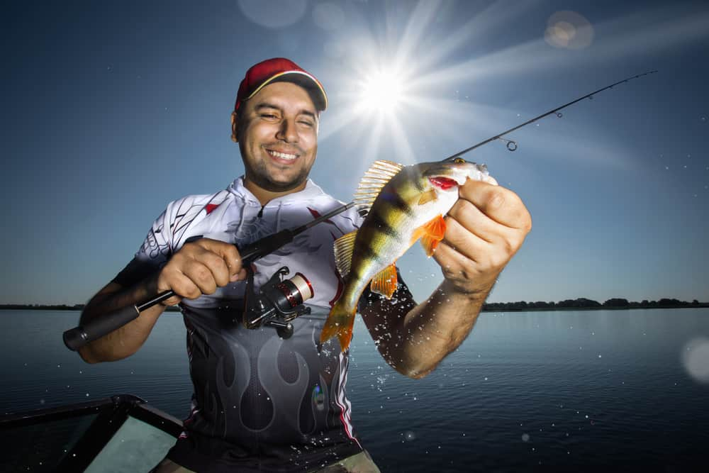 man holding yellow perch and a spinning rod