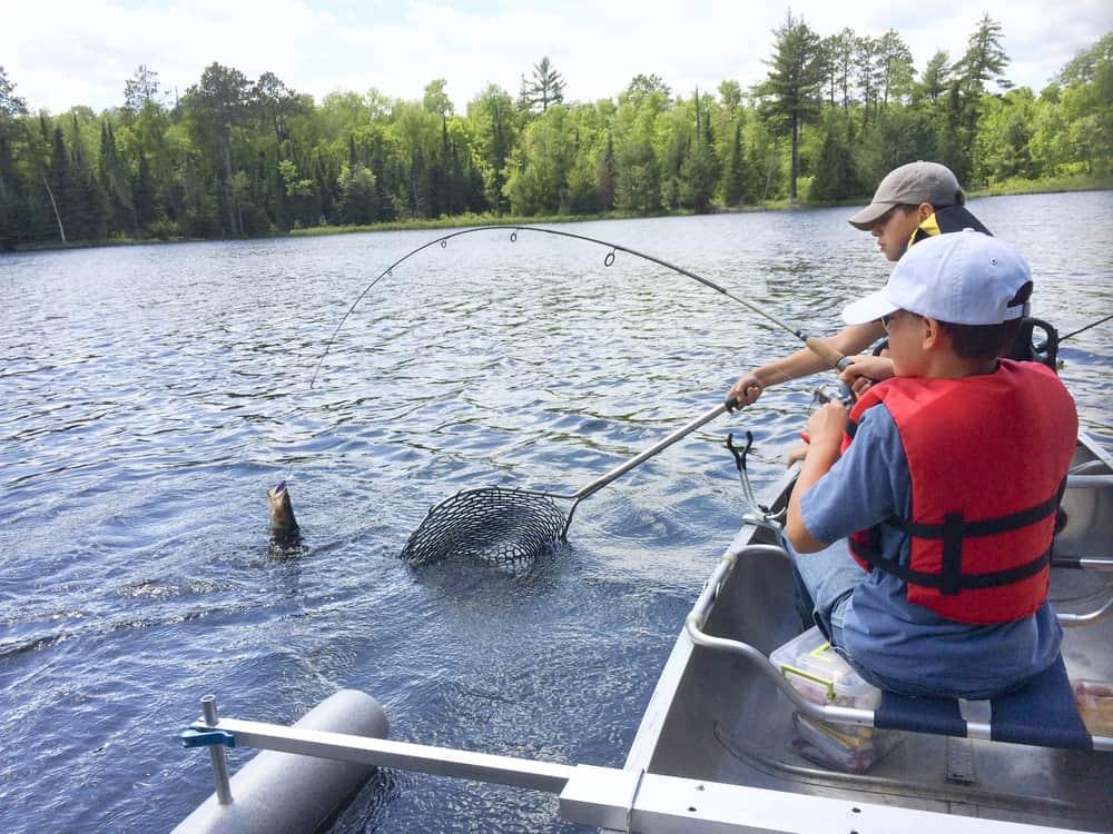 two boys in a canoe land a walleye