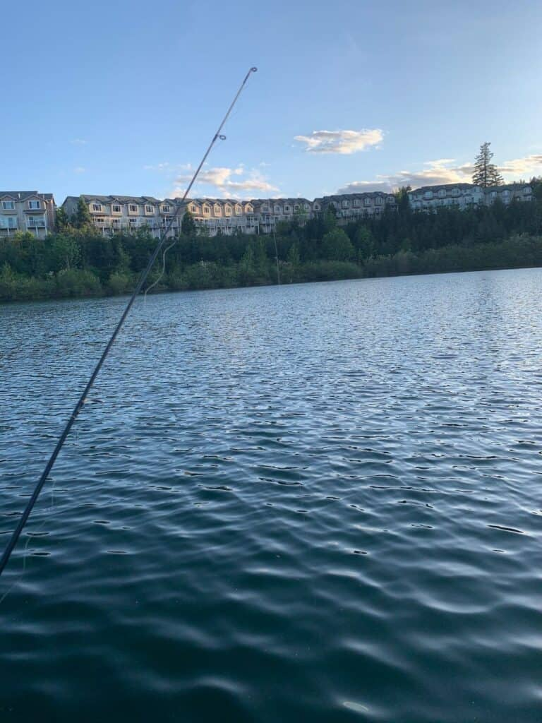A fishing pole in front of Progress Lake with condos in the background.