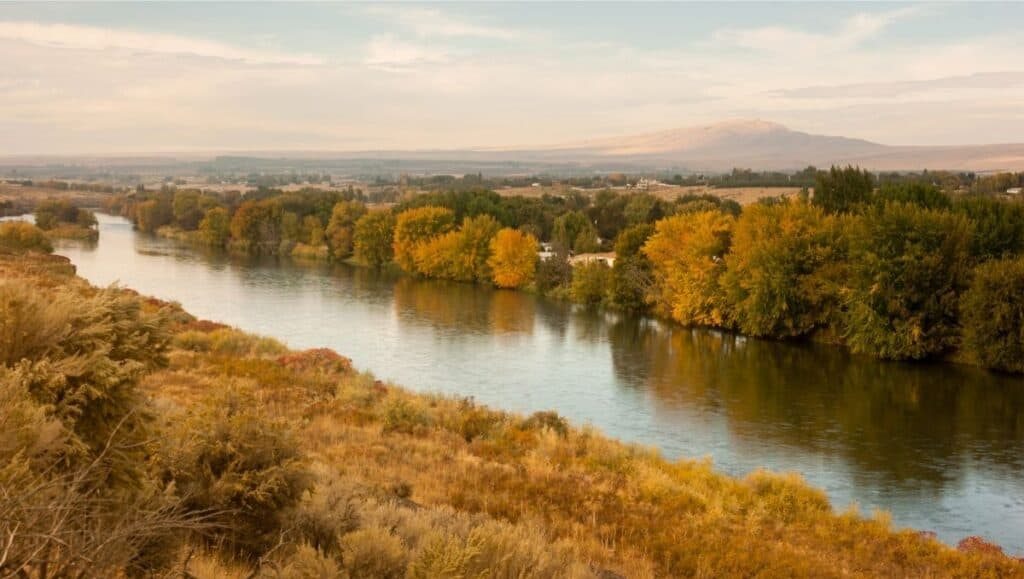 The lower Yakima River flows slowly through agricultural lands in an area known for catfish fishing.