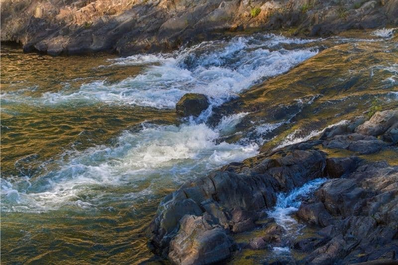 A small rapids on Mountain Fork River where anglers might catch trout.