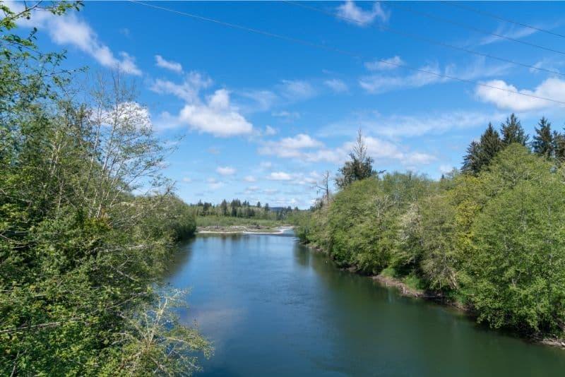 A calm stretch of the Bogachiel River under blue skies.